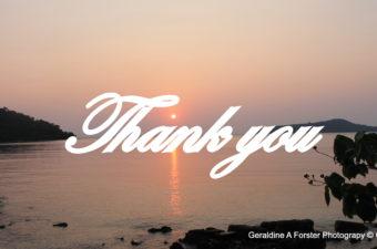 An Enormous Thank You